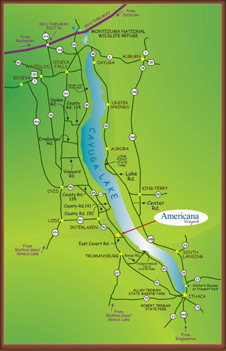 Map to Americana Vinyards Click to View Larger